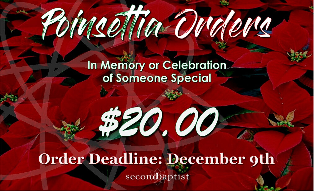 Poinsettia Orders In Celebration of Advent