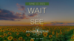 """""""Wait and See"""" - Worship Service - June 13, 2021"""